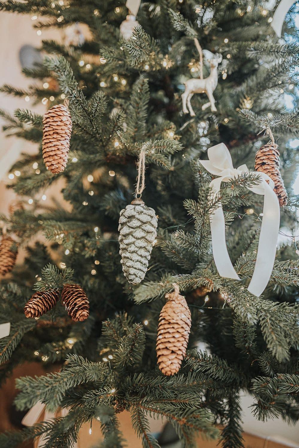 Tannenzapfen - Weihnachtsdekoration