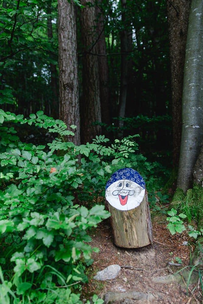 Ellmaustein Zwergalwald