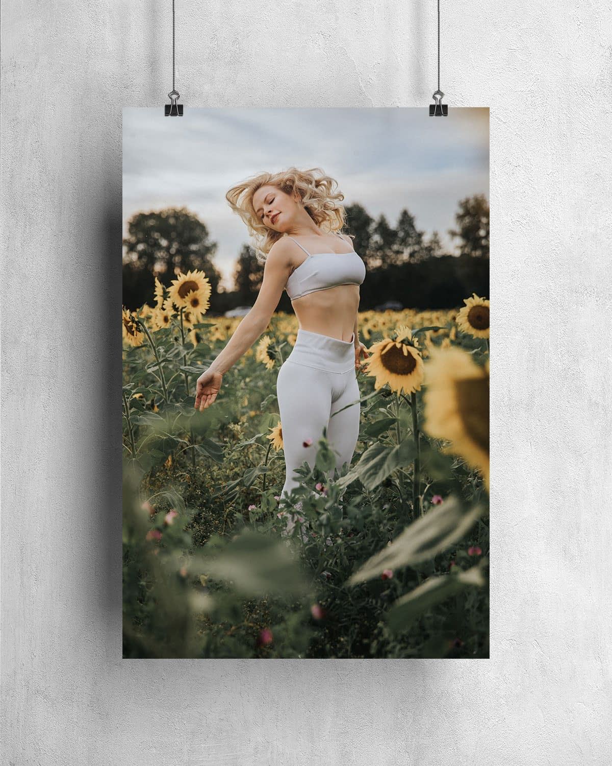 Poster - Sunflowers 3 - NZUP-006-05