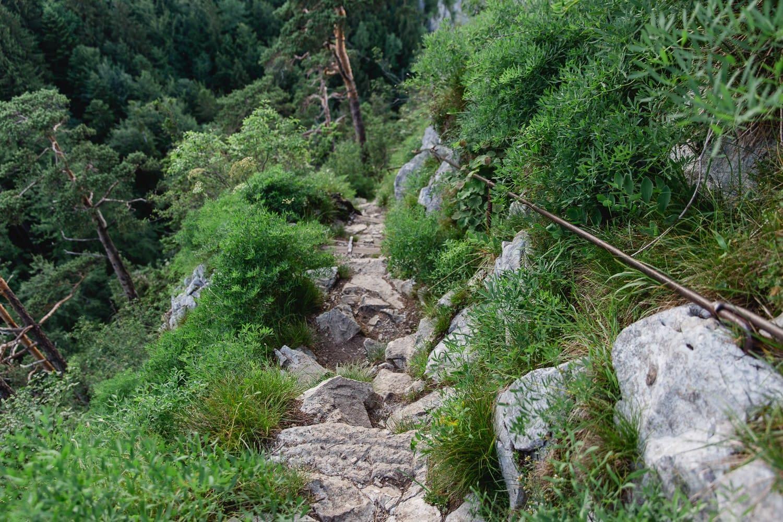 Abstieg kleiner Barmstein